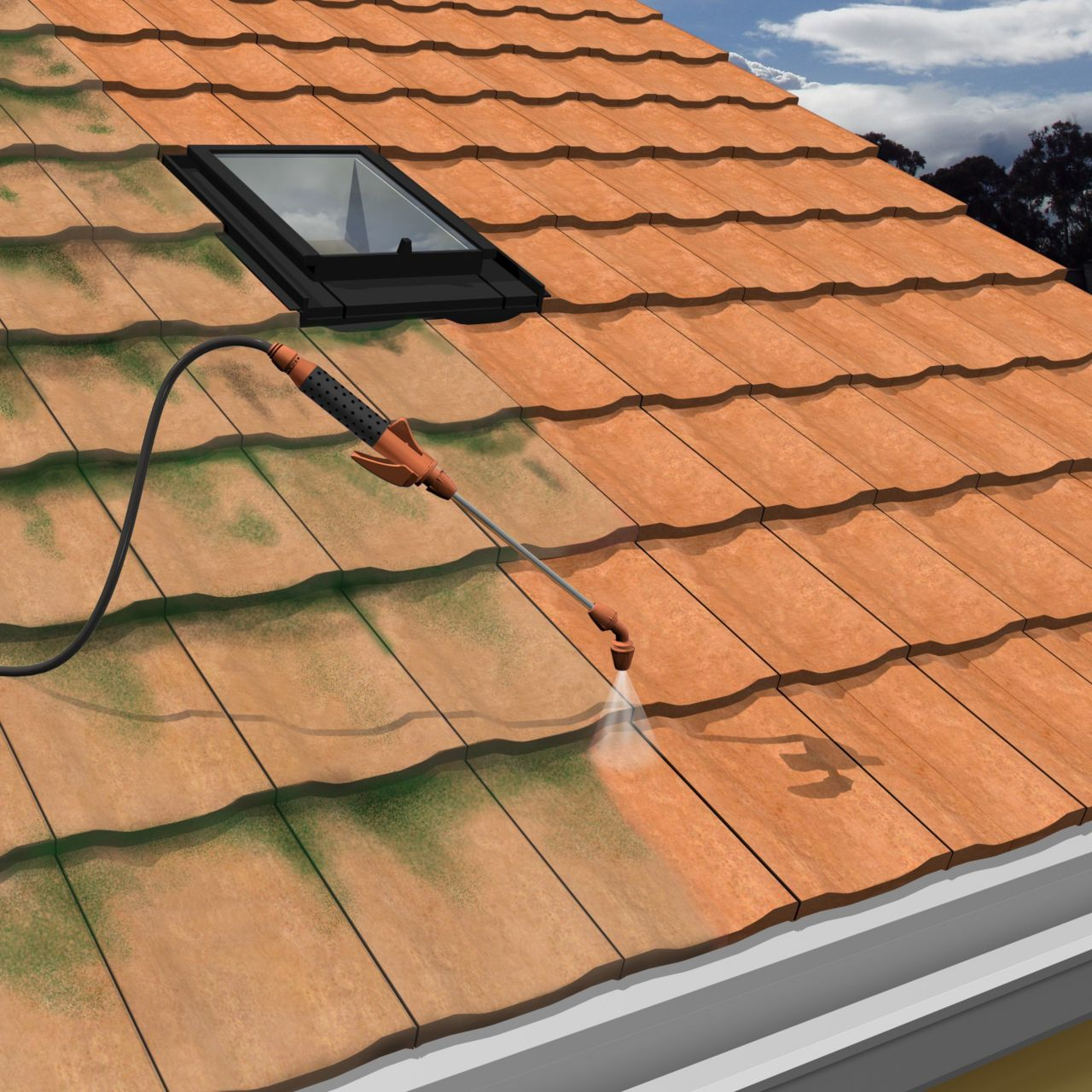 Make it Pro Remove Roof Mould