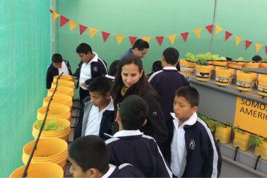 Huerto Comunitario