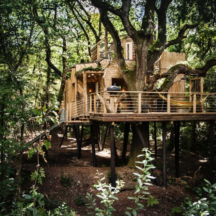 The treehouse is a private kingdom