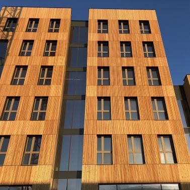 Mit der Lärchenholzfassade steht das Element Holz im Mittelpunkt