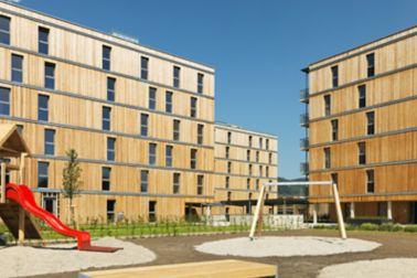 Fachdachabdichtung für die Holzbauten