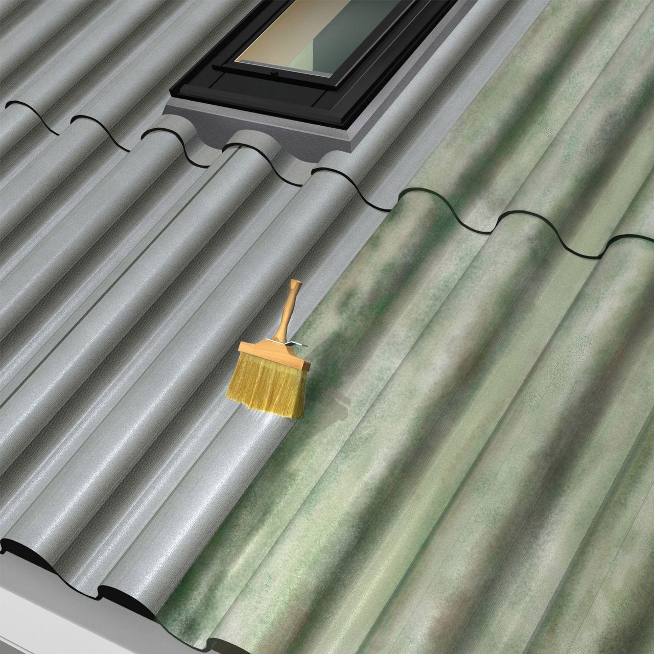 mos verwijderen op daken met platen
