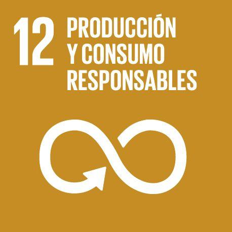 Codigo de naciones unidas producción y consumo responsables