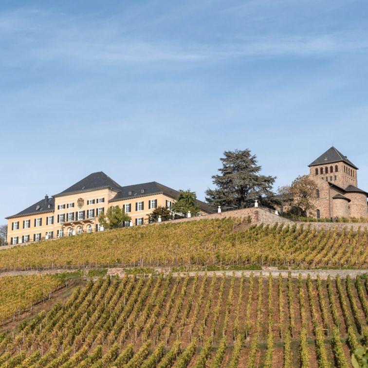 Flooring: Weingut Johannisberg Stachelwalz
