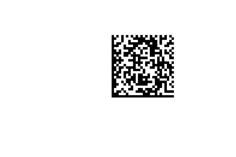 DMC (Data Matrix Code)
