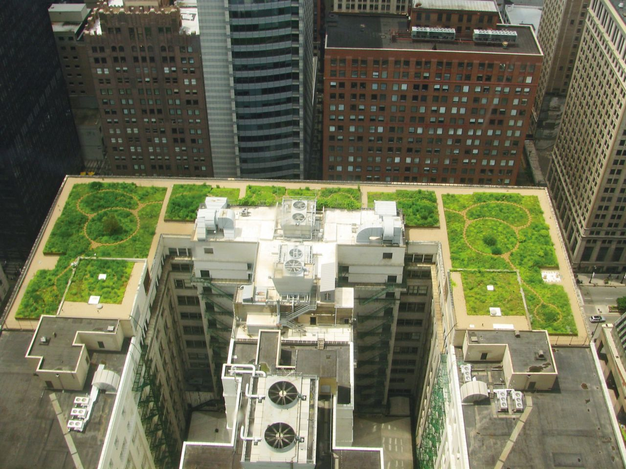 Green roof with single-ply membrane installed on Chicago City Hall