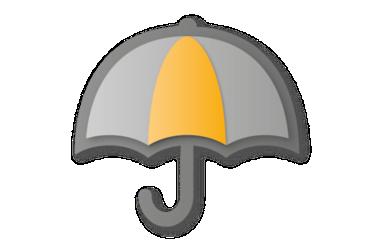 Icon Durability