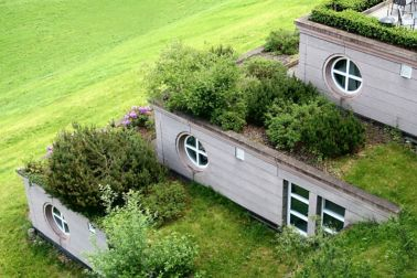 Green roof with single-ply membrane