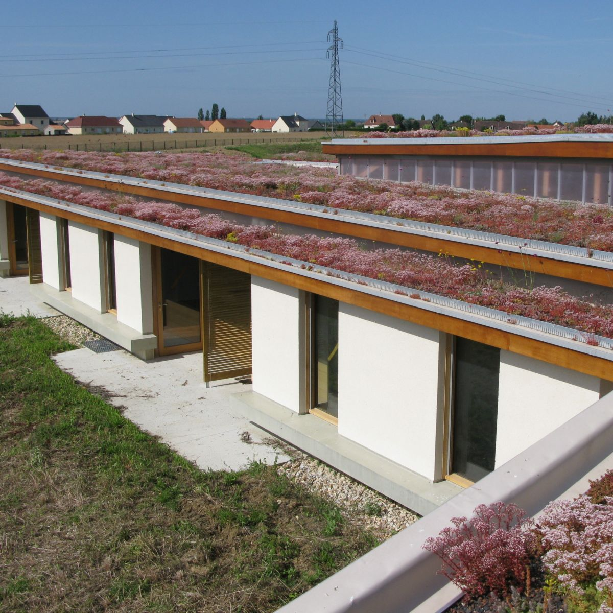 Nursing Home With A Green Roof