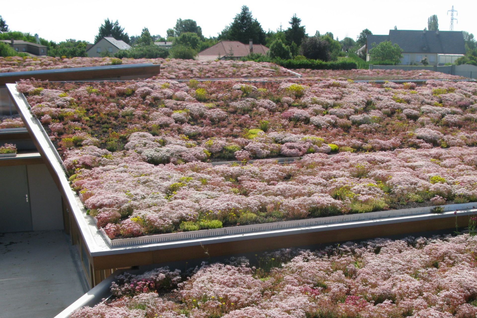 The green roof of a nursing home in France