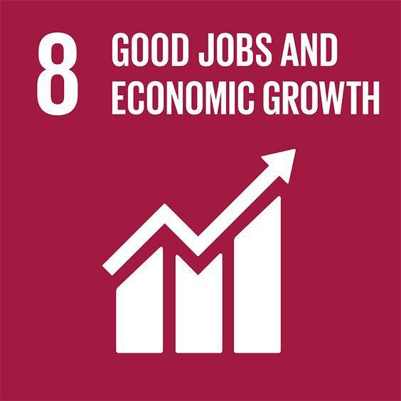 8th UN SDG