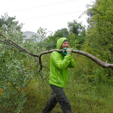 Man Carrying a Tree