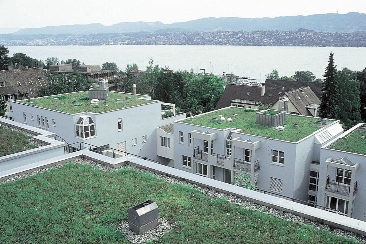 Tetto verde di un edificio residenziale