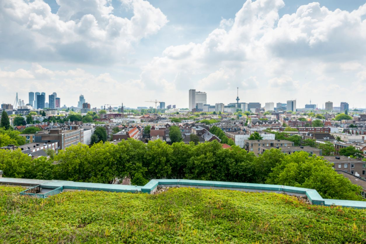 High angle view of the skyline of Rotterdam with the Euromast and Erasmus bridge, and a green roof in the foreground
