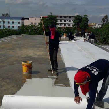 Burgundy Residence Refurbishment Roof by Sika LAM