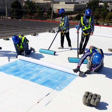 Kellogg roof refurbishment Sarnafil