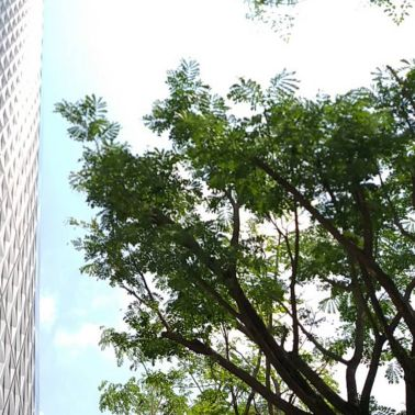Banyan Tree Residences PUR resin floor in driving area and parking lot