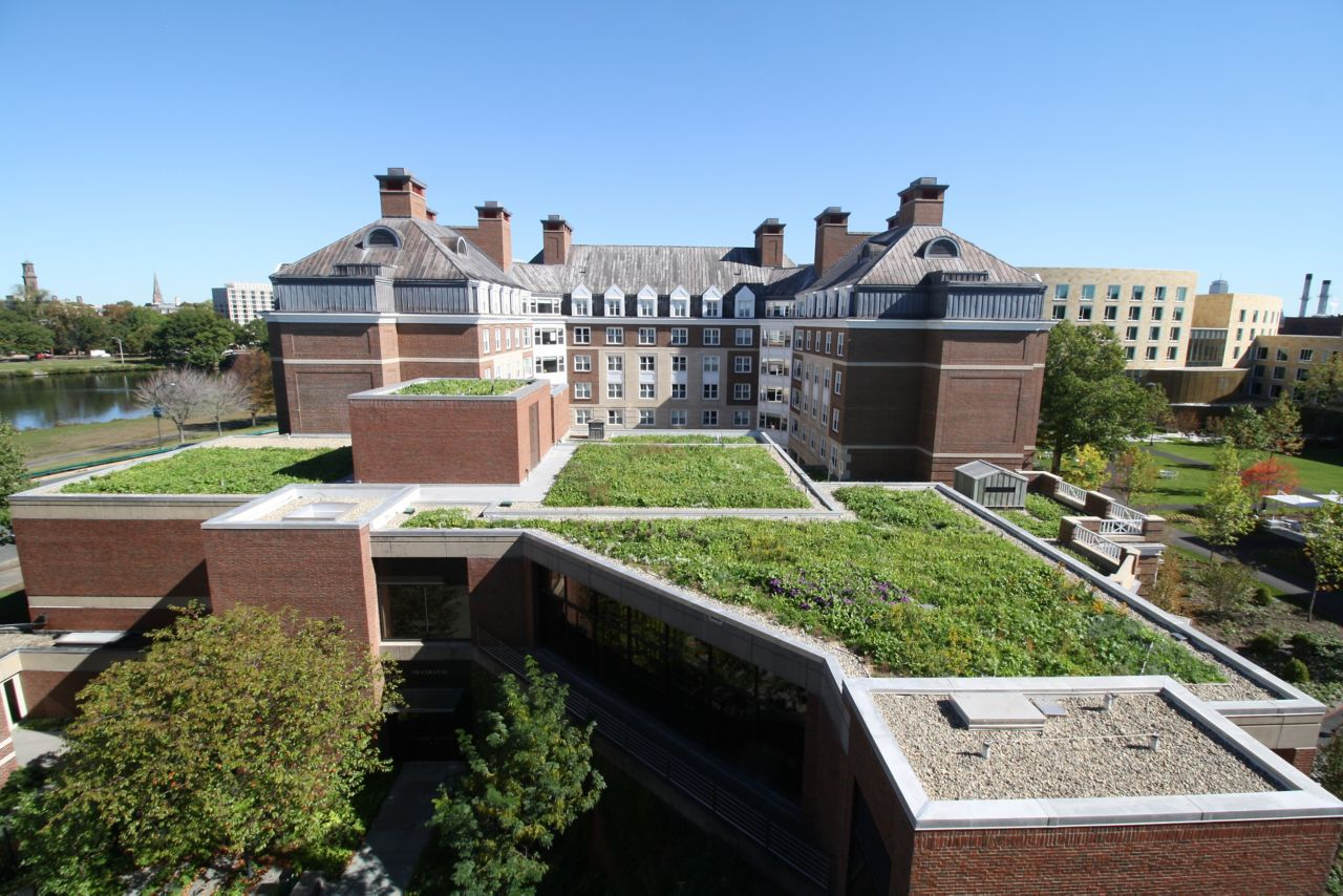 Harvard Business School Green Roof