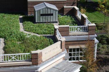 Harvard Business School Enjoying