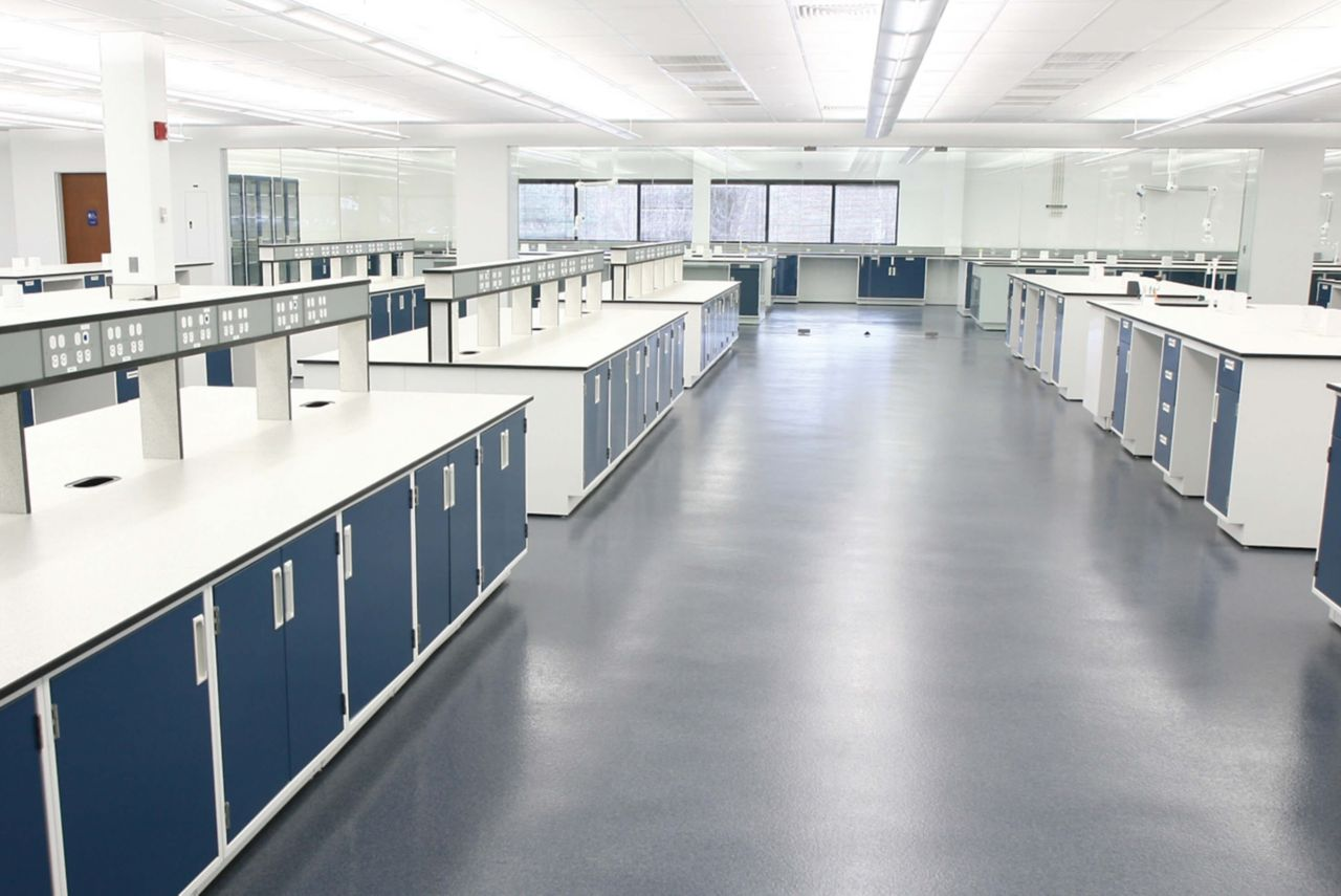 lab with quartzite floors