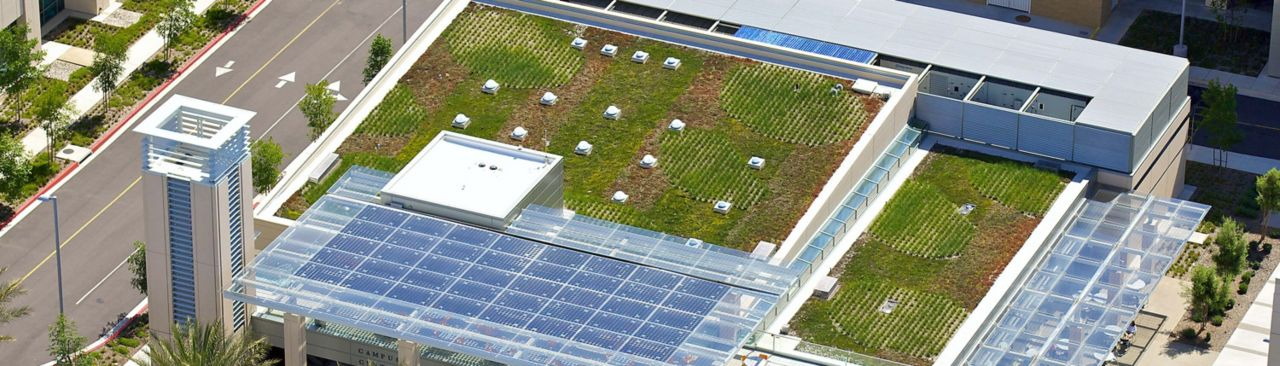 San Diego County Operations green roof