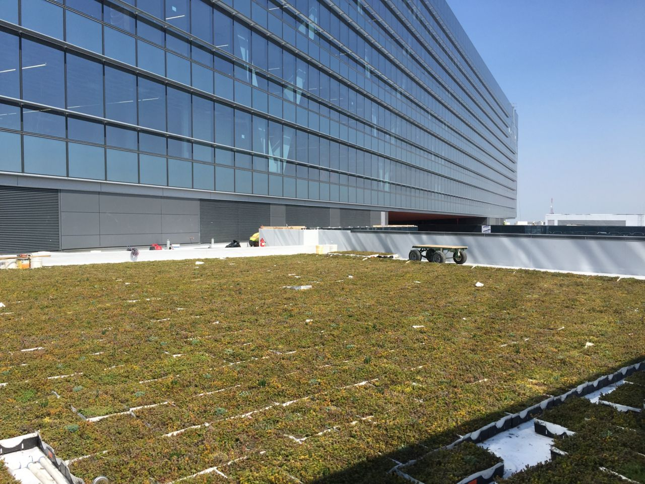 Zurich Insurance Green Roof